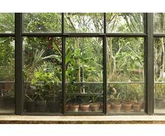 Scenolia Papier Peint Intissé Jardin et Patio Tropical 3 x 2,70m - Décoration Murale Effet Trompe l'Oeil - Revêtement Panoramique Tapisserie XXL - Pose Facile et Qualité HD