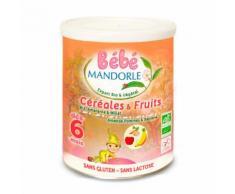 Préparation bio pour repas bébé dès 6 mois - Céréales & fruits - Boite 400g
