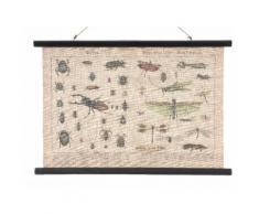 Tableau en toile à suspendre effet vintage insecte 80x55cm MARCEL