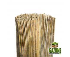 FRANCE GREEN Canisse bambou entier naturel