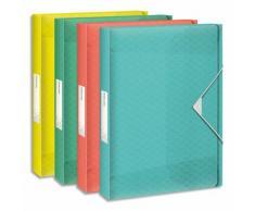 Boîte de classement Colour Ice dos de 4 cm, en polypropylène 6/10ème. Coloris assortis - Lot de 8