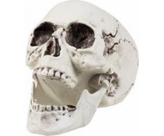 Décoration squelette 24 x 18 cm Halloween Taille Unique