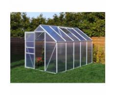Serre de jardin 5.89 m² en aluminium - 190x310 cm