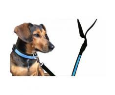 Collier et laisse phosphorescents pour chien : collier et laisse / bleu / taille M / 2