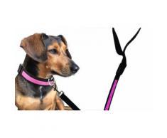 Collier et laisse phosphorescents pour chien : collier et laisse / rose / taille M / 2