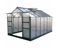"Serre jardin polycarbonate ""Dahlia"" Vert Sapin 9,24 m²"