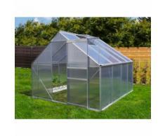 Serre de jardin 6.25 m² en aluminium - 250x250 cm
