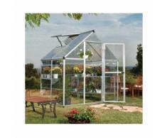 Serre de jardin en polycarbonate Hybrid 2,33 m², Couleur Argent, Ancrage au sol Oui - longueur :