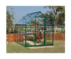 Serre de jardin HARMONY 6x8 vert - 4.6m²