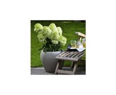 Jardiniere - bac a fleur pot en plastique rotomoulé lineo 282 - 48 x 39 cm - 50 l - taupe granite