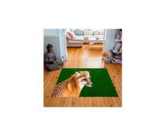 Tapis carré velours antidérapant imprimé animaux foxy - 135 x 135 cm