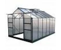 Green Protect Serre de jardin 9,13m² verte en polycarbonate 4mm + embase Green Protect