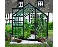 halls Serre de jardin 6,2m² verte et verre horticole Popular - Halls
