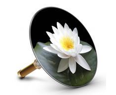 Bath fleur de lotus blanc Plopp 4436 bouchon pour baignoire