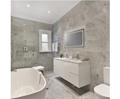 Miroir de salle de bain lED lumineux modèle eustath miroir 100 x 65 cm