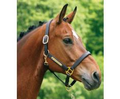 iMARC Plaque pour cheval arrondi gravé pour licol, bridon ou selle 6,3 x 0,9 cm