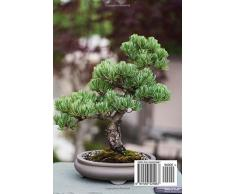 A Bonsai Tree in a Pot Ornamental Plant Journal: 150 Page Lined Notebook/Diary