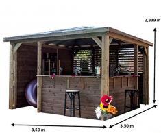 Carport en aluminium avec toit 2 pentes