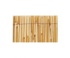 Canisse en bambou naturel 2x5m