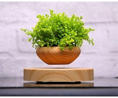 ZOMTOP Lévitation magnétique Air Suspension Bonsai Pot de Fleurs en Pot soulever baignoires