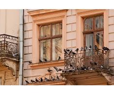 ISOTRONIC anti-oiseaux Piles et mobile Oiseau Répulsif ultrason Répulsif colombe colombe Pigeon de protection contre pigeons oiseaux et les mouettes sur balcon gouttière de fenêtre arbres fruitiers les Vergers Carport anti-oiseaux