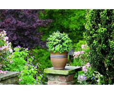 Gardman 02808 Boule Topiaire à Effet Plante Artificielle à Fleur Violette 28 x 28 x 28 cm