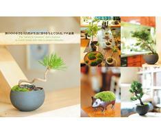 Petit Bonsai: Create a Landscape in a Little Pot