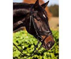 KERBL Bridon Standard pour Cheval de Selle Noir