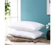 Générique Oreiller en Fibre de Sarrasin en Coton Doux Confortable pour Votre Cou, Oreiller en Plumes Blanches, Single 48X74