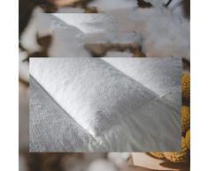 J-Oreiller Oreiller de sarrasin cervical adulte de vertèbre, oreiller de sommeil d'hôtel à la maison (simple) 48 * 74cm