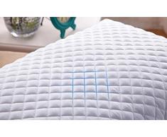 Yyzhentou Oreiller Sarrasin Oreiller, Sain Respirante/Efficace Support/Double Fermeture À Glissière/Confortable/Sarrasin Shell/Un 28x48cm, Oreiller Taille Standard, (Size : 37x56cm)