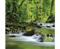 Posters: Forêts Poster Reproduction - Fleuve De Montagne Magique (100 x 100 cm)