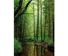 Forêts Papier Peint Photo/Poster - Un Ruisseau Tranquille Coule Au Milieu, 2 Parties (250 x 180 cm)
