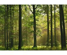 Posters: Forêts Papier Peint Photo/Poster - Forêt D'Automne 8 Parties (368 x 254 cm)
