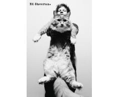 1art1 Ed Sheeran Poster - The A Team, Chat (91 x 61 cm)