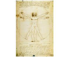 1art1 Leonardo Da Vinci Poster - lhomme VItruvien VI (91 x 61 cm)