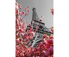Poster Paris Tour Eiffel (61cm x 91,5cm)