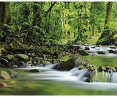 Posters: Forêts Poster Reproduction - Fleuve De Montagne Magique (50 x 40 cm)