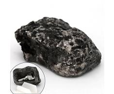 MIONI Hide-a-Spare-Key Faux Rock - ressemble et se sent comme de la vraie pierre - coffre-fort pour jardin ou cour extérieure, géocaching
