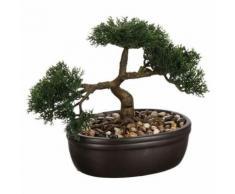 Bonsai Pot Ceramique H.23cm - Objet à poser