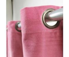 RIDEAU - DOUBLE RIDEAUX Rideau velours en coton - Prune - 150 x 250 cm - Rideaux et stores