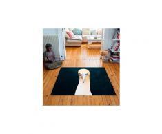Tapis carré velours antidérapant imprimé animaux northern gannet - 135 x 135 cm