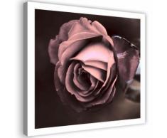 Tableau décoratif Impression sur toile Image Canevas Belle rose 40x40 - Décoration murale