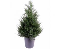 Plante artificielle haute gamme Spécial extérieur Cyprès coloris vert - Dim : 65 x 33 cm - Plantes artificielles