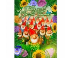 Jeux de Rio Grande Ces nains de jardin embêtants - Autre jeu de société