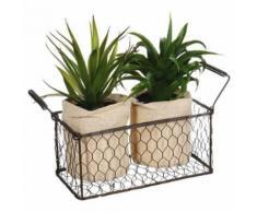 Lot de 2 Aloe Vera & Panier Well 23cm Vert - Plantes artificielles