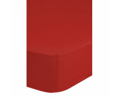 Emotion Drap-housse sans repassage 90 x 200 cm Rouge 0220.80.42