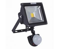 Biard Projecteur LED 20 Watts Avec Détecteur Pose Murale Extérieur