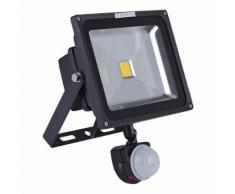 Biard Projecteur LED 30 Watts Noir Avec Détecteur Éclairage Extérieur