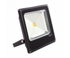 Biard Projecteur LED 50 Watts Éclairage Extérieur Économe en Énergie